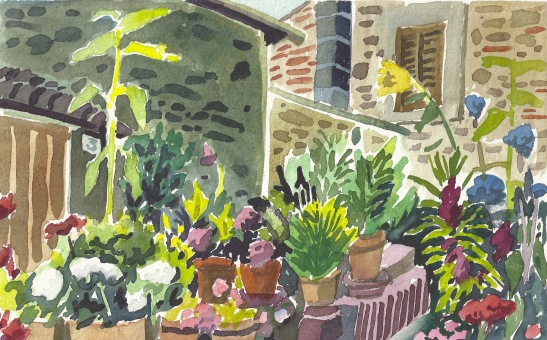 maria's garden